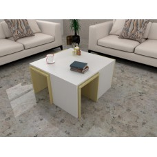 طاولة وسط SHCT03 لونين2