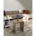 طاولة وسط SHCT16 لونين